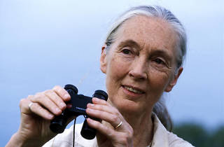 Dr Jane Goodall with binoculars