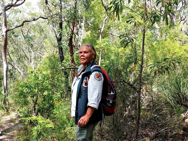 Indigenous guide in Dharawal National Park