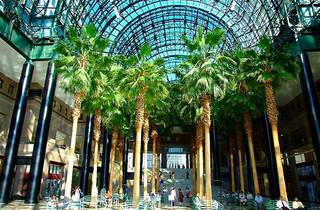 Watch free movies under palm trees at Brookfield Place's indoor atrium