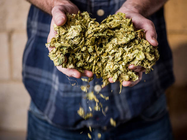 Sambrook's Brew School and Brewery Experience