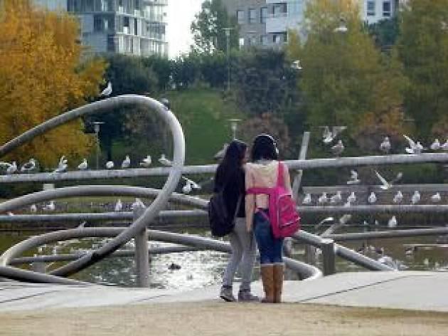 Sons de la Natura a la Ciutat