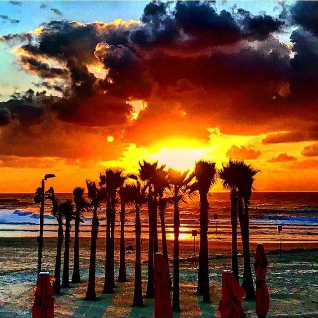 Afbeeldingsresultaat voor sunset tel aviv