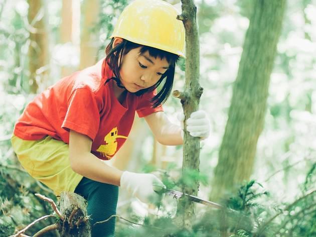 2. 森の手入れをする。