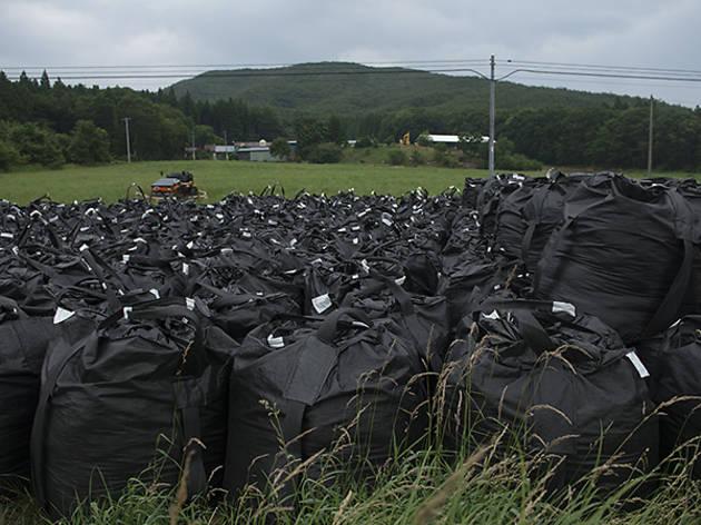 仮置き場に置かれた、放射性廃棄物入りのフレコンバッグの山