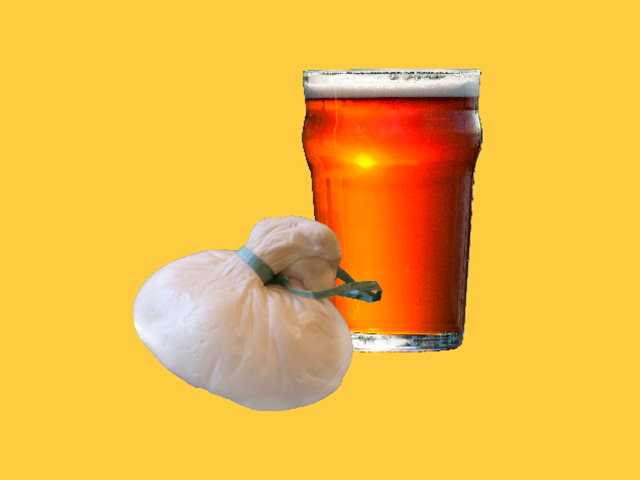 Burrata and pilsner beer