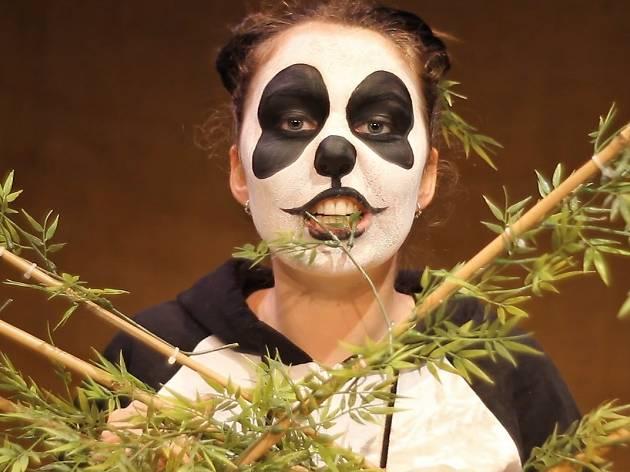 The Homeless Panda