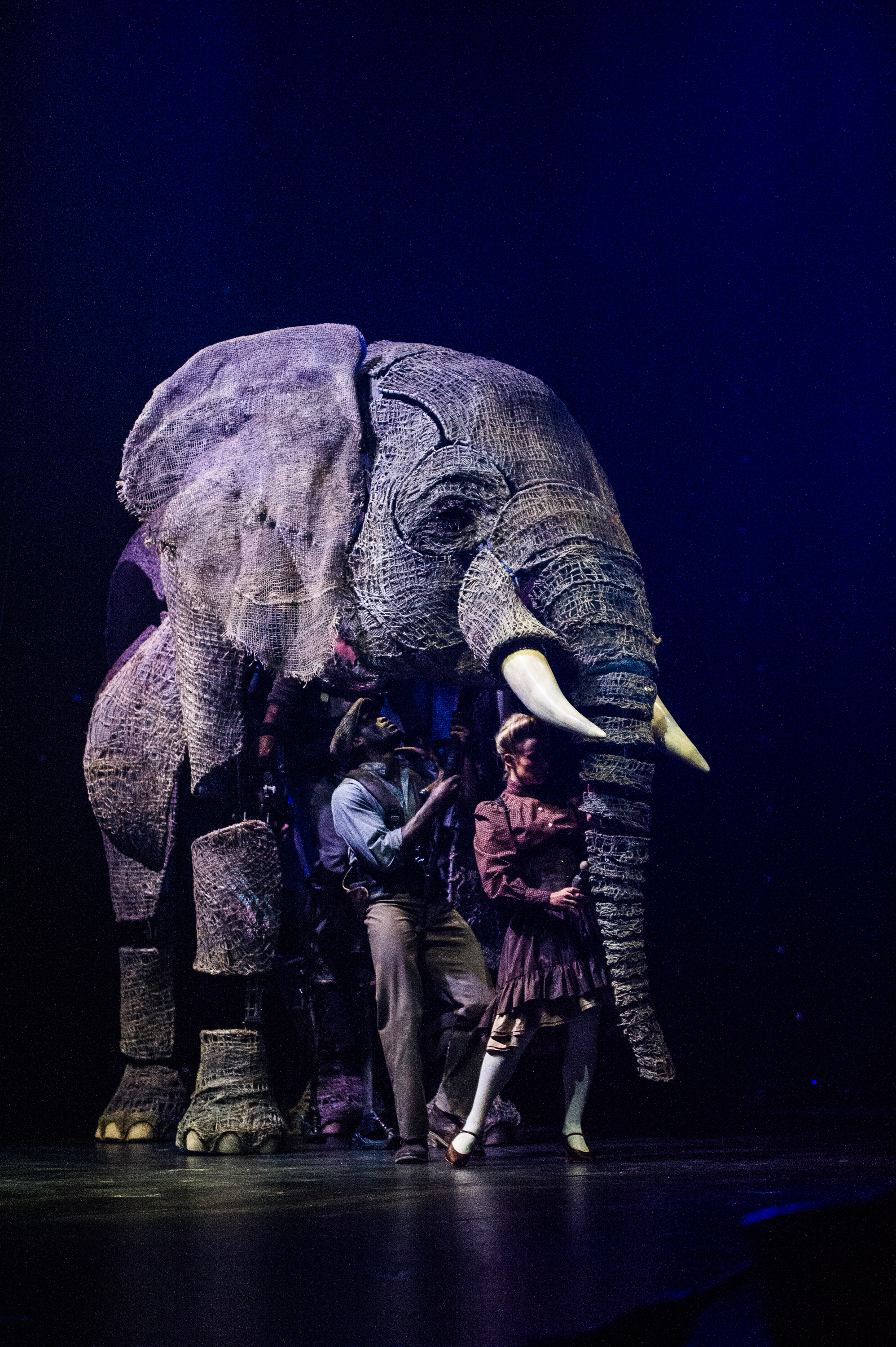 Get a new circus experience with Circus 1903