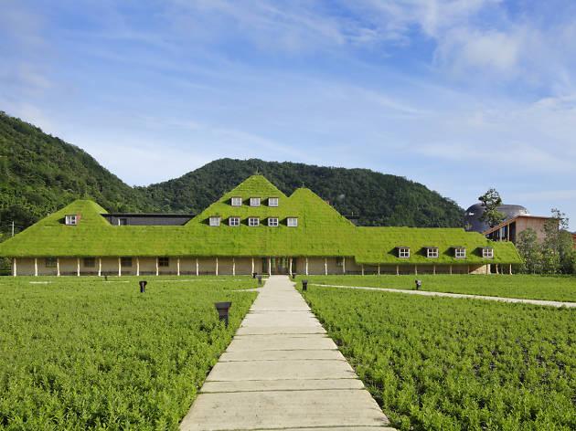 藤森照信展―自然を生かした建築と路上観察