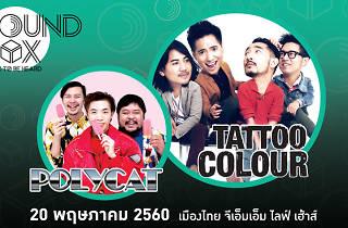 Tattoo Colour x Polycat