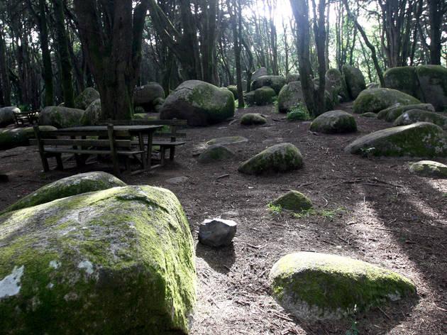 Parque da Peninha - Sintra