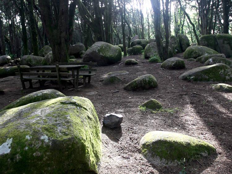 Os melhores percursos de trekking em Lisboa, Sintra e Cascais