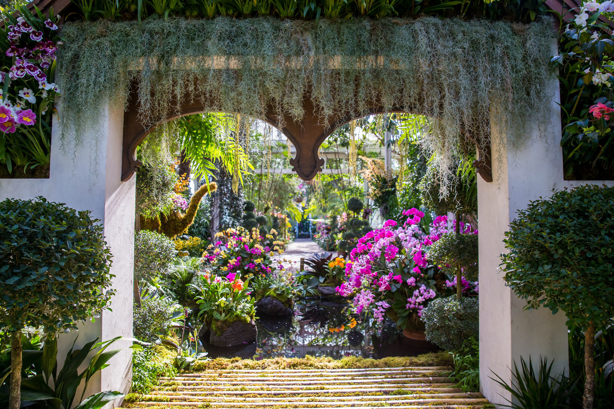 See photos from the NYBG's over-the-top Thailand-inspired Orchid Show