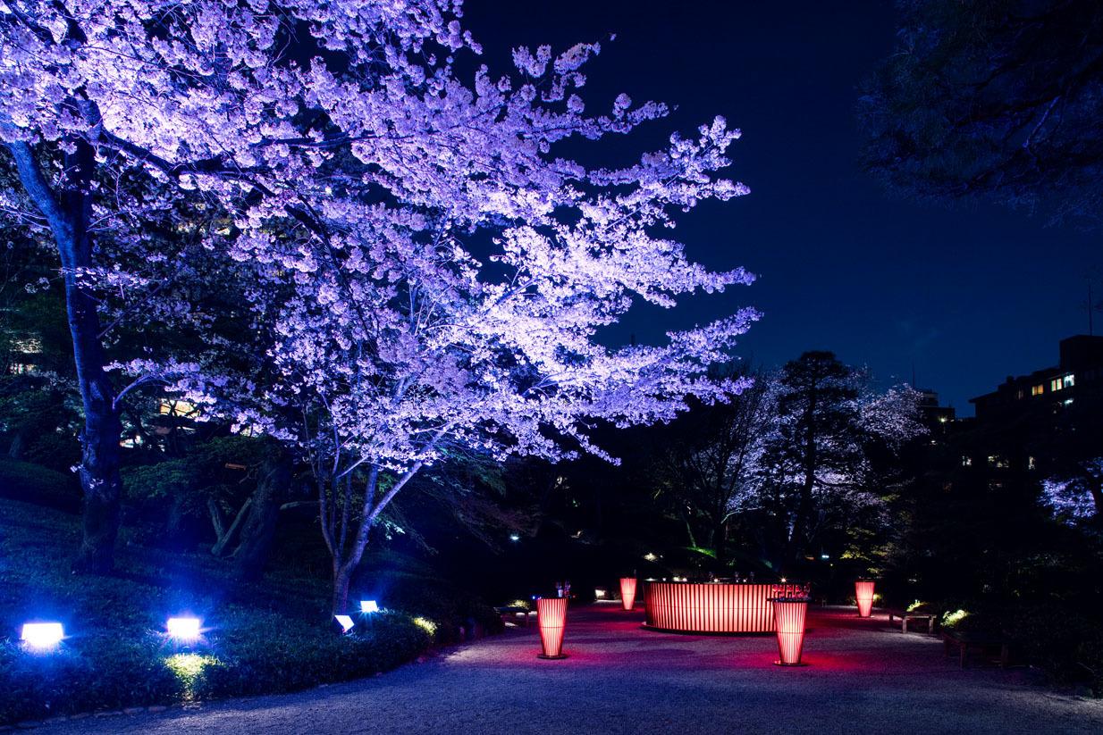 桜花爛漫祭「YATAI」