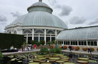 20 facts you definitely didn't know about the New York Botanical Garden