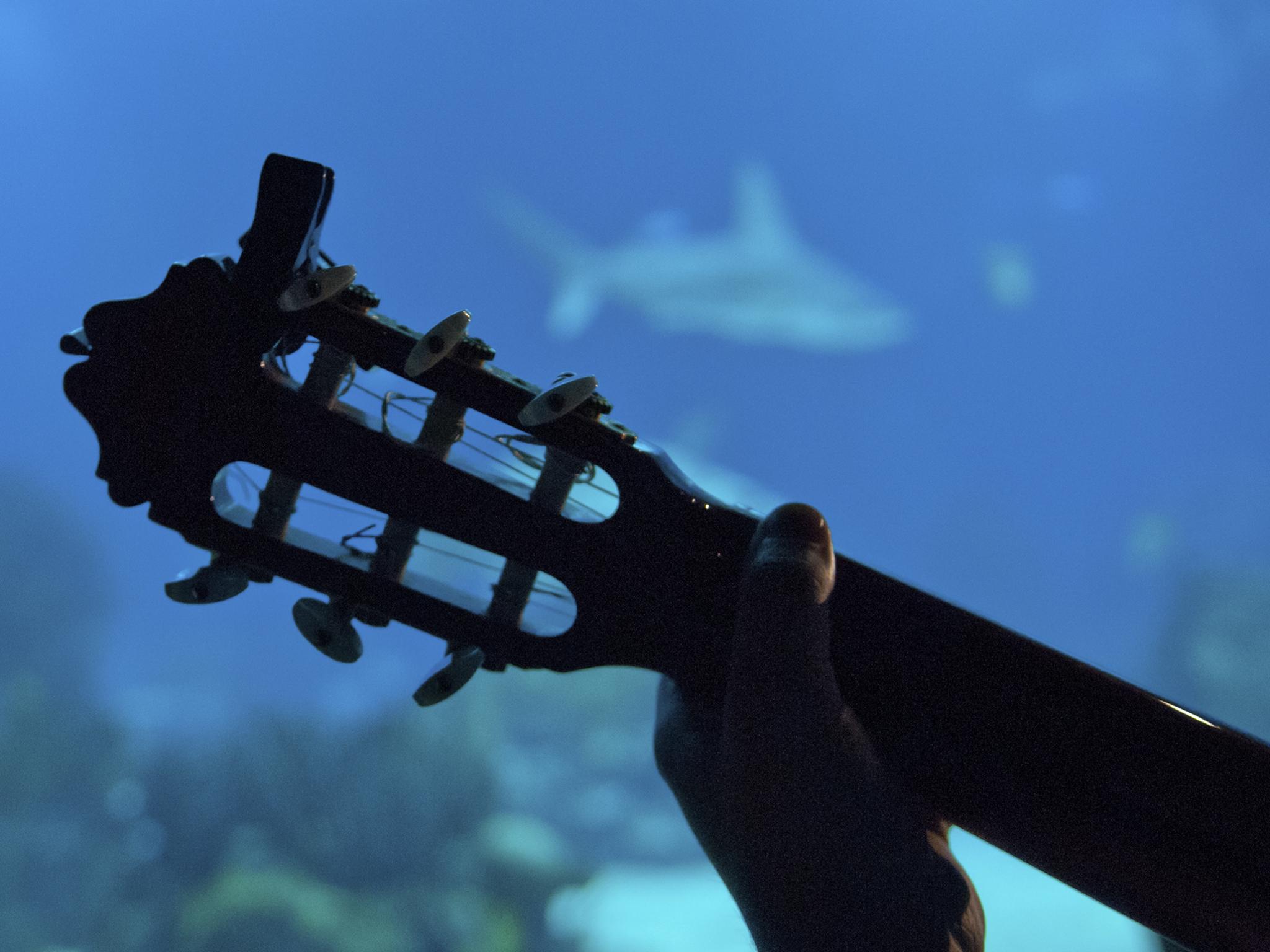 Fado no Oceanário