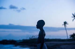 Moonlight, oscar best picture nominees