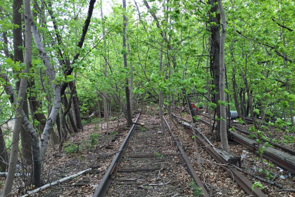 Take a behind-the-scenes tour of an abandoned rail line in Queens
