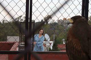 Más Cine Mexicano en el Cine Tonalá