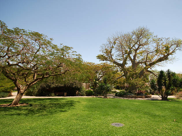 When nature calls: the best gardens & parks in Israel