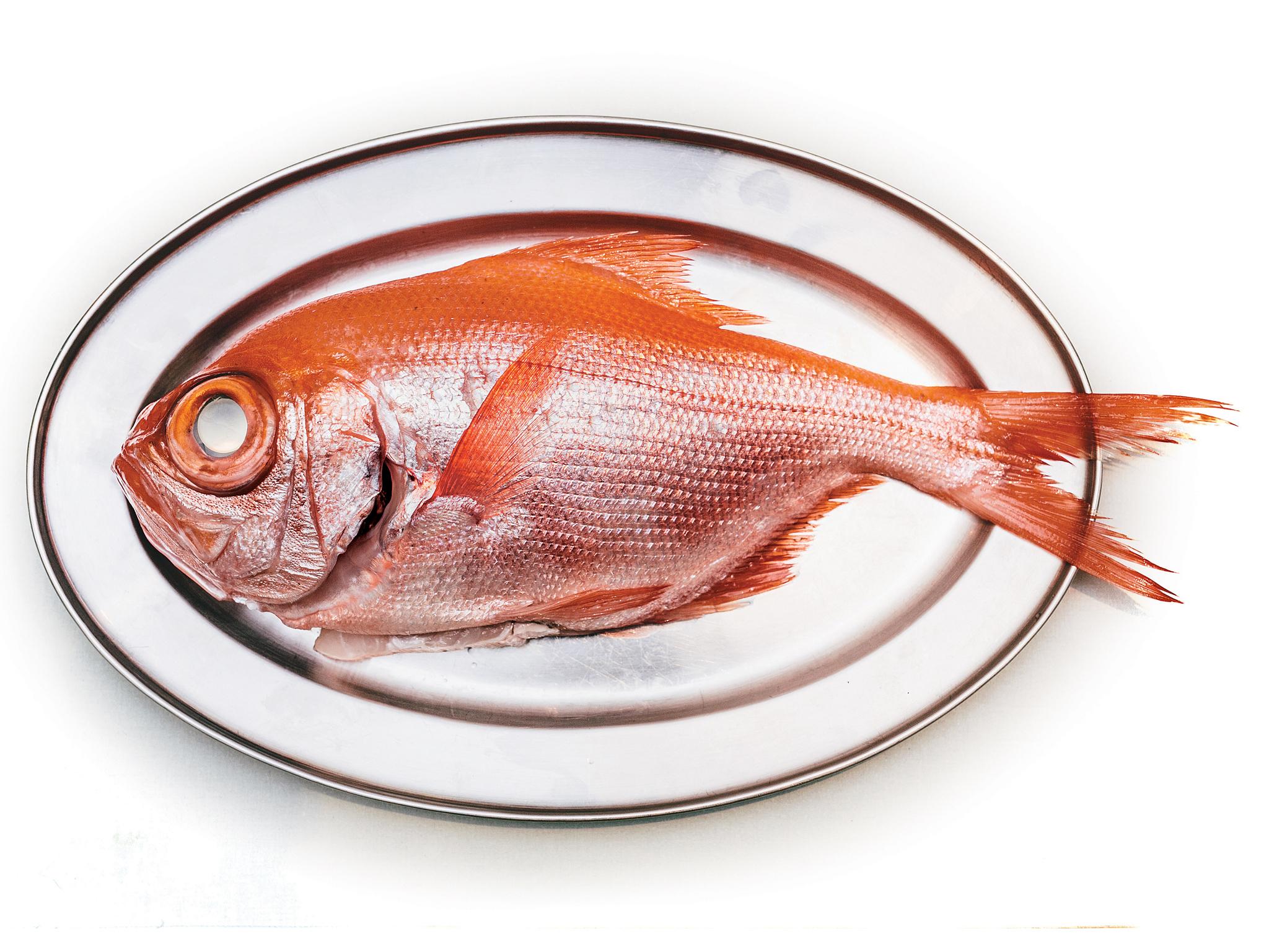 Os melhores restaurantes de peixe e marisco
