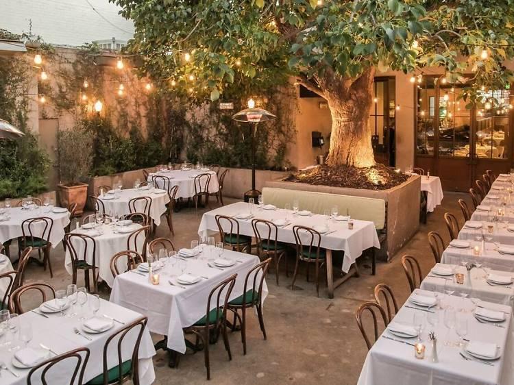 Best Bar-Restaurant Program