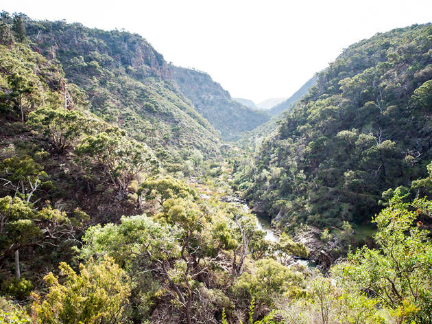 Werribee Gorge