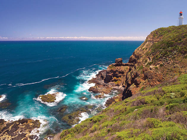 Bushrangers Bay Trail