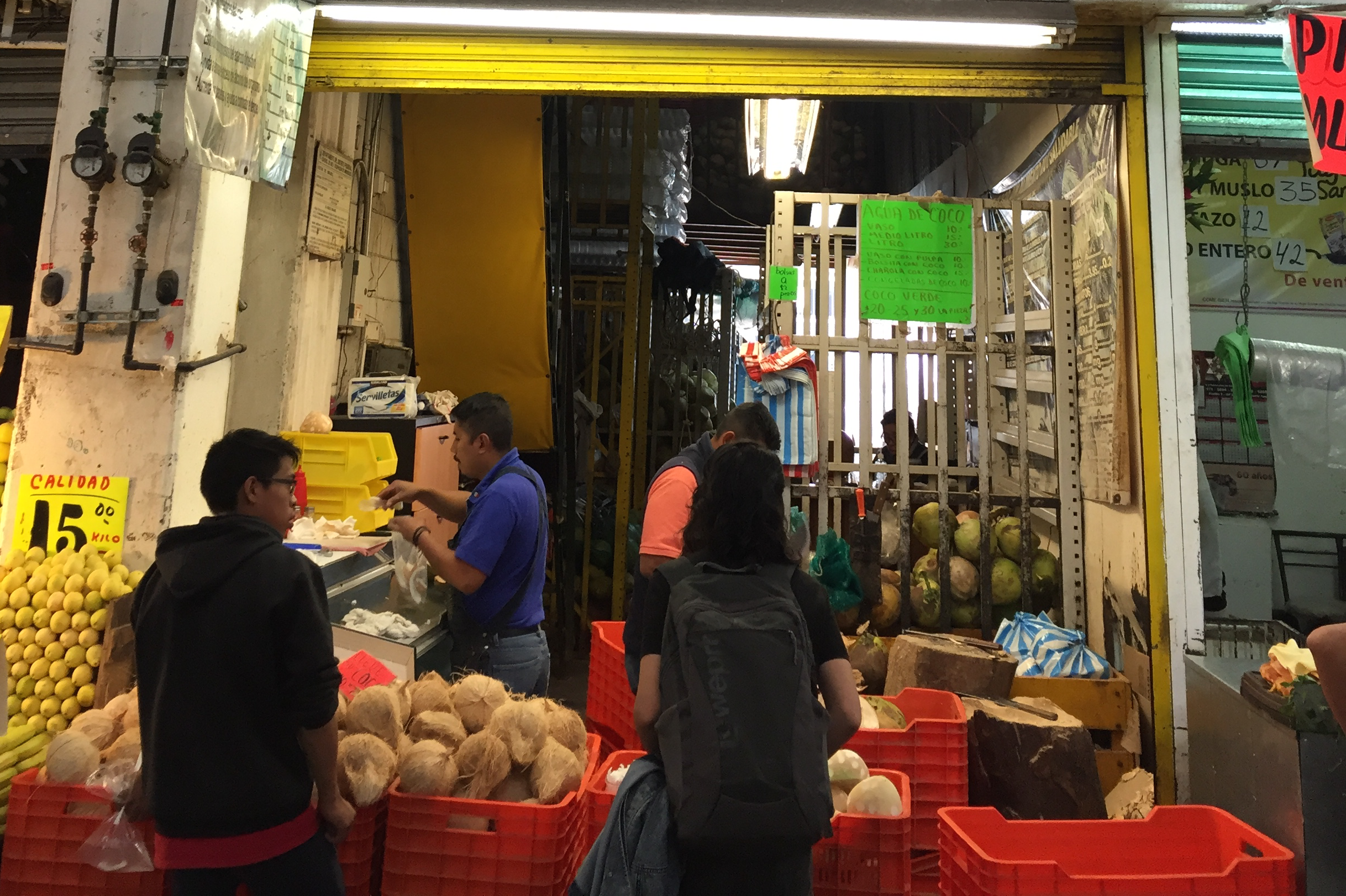 Cocos en la Ciudad de México