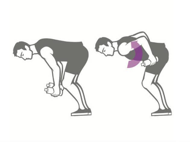 Sexercise para ellos / brazo y espalda