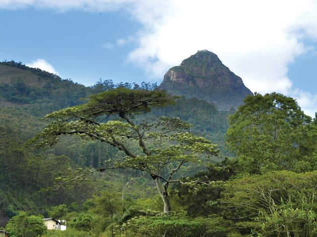 Adam's Peak pilgrimage season