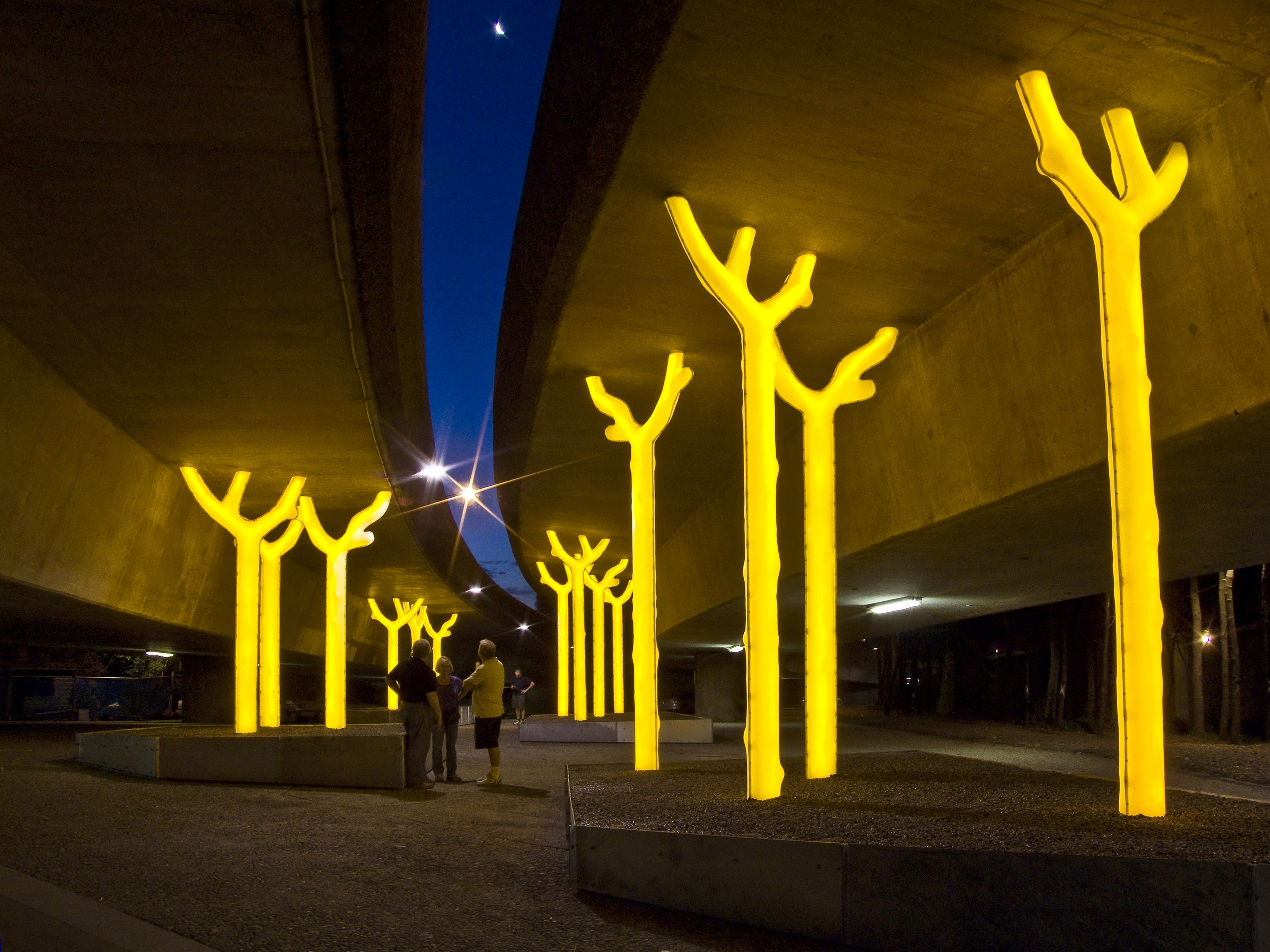 Luminous yellow trees