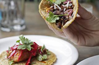 london's best tacos, club mexicana