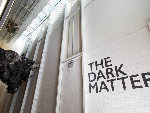 The Dark Matters 1 (Photograph: Anna Kucera)