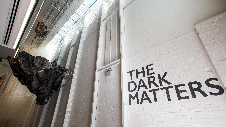 The Dark Matters