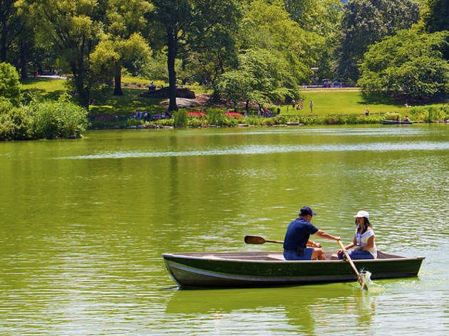 Row boating in Central Park