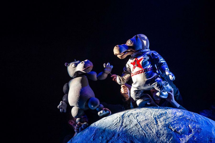 The First Hippo On The Moon (Over 3s)