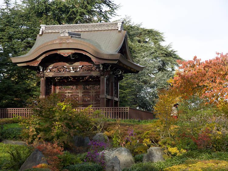 The Japanese Landscape at Kew Gardens