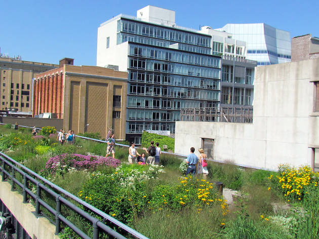 The best things to do near the High Line in NYC