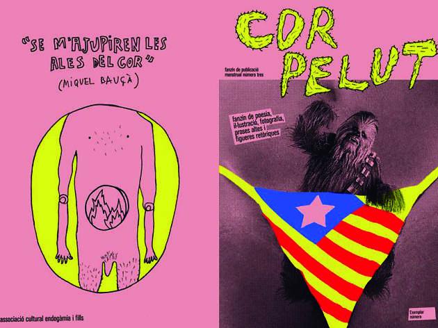 Cor Pelut Fanzine