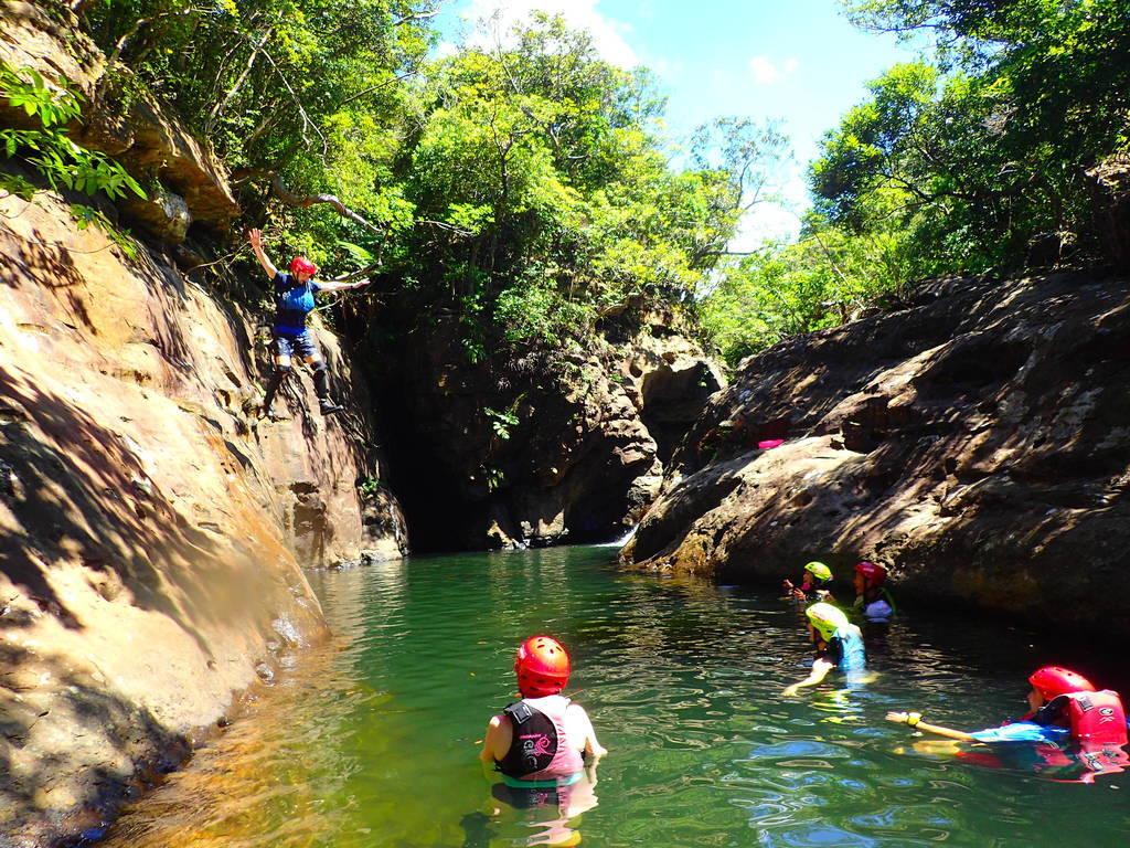 Explore the Iriomote jungle...
