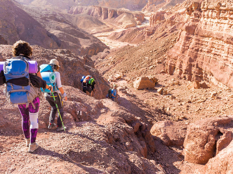 A thrill seeker's guide to Israel: activities on land, in water and high in the sky