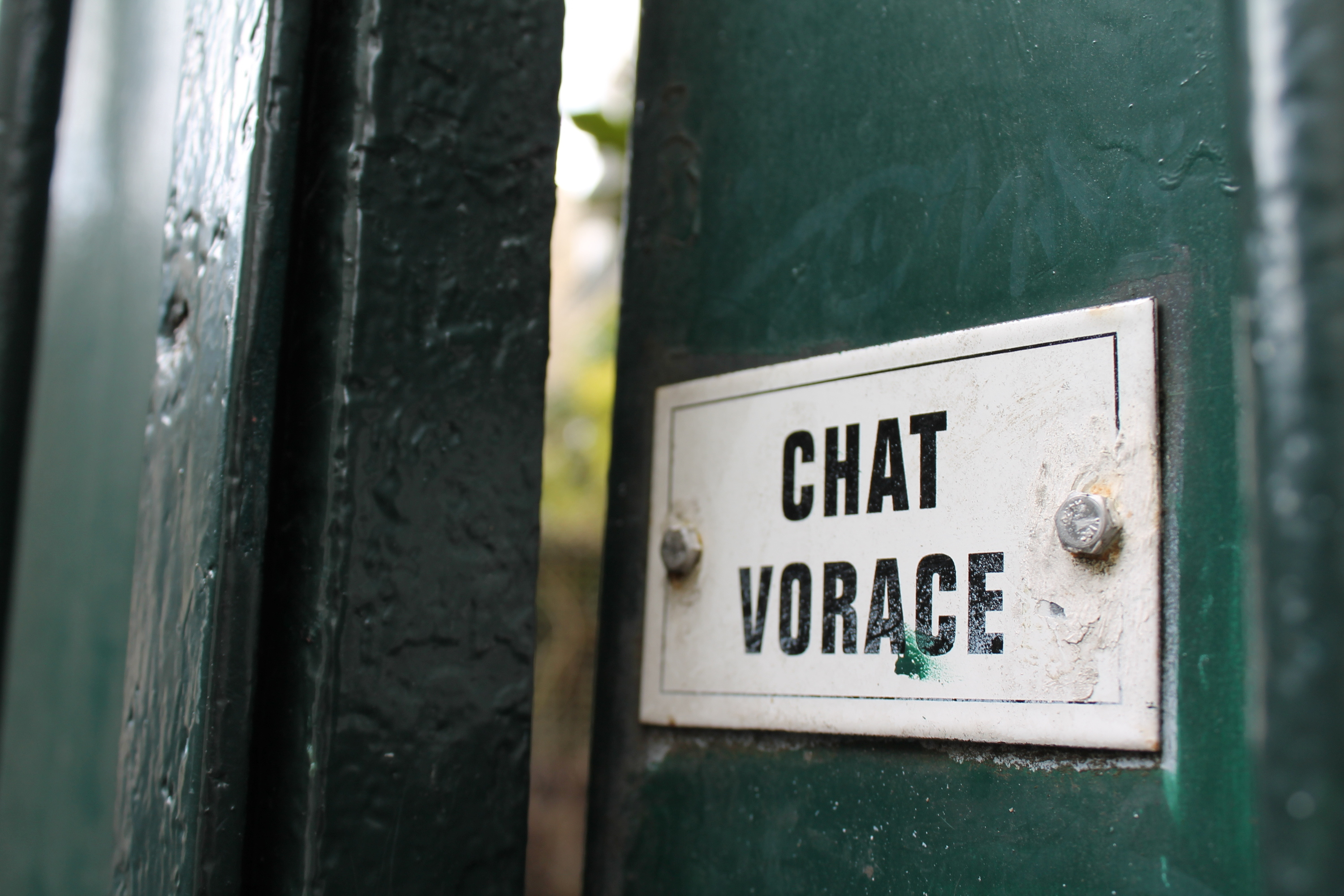 24h_nation_chat_vorace