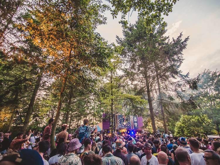 Farr Festival (UK)
