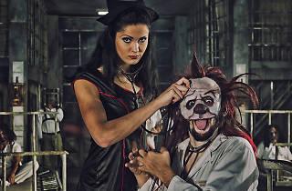 El circo de los horrores. Manicomio