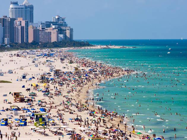 Your guide to spring break in Miami