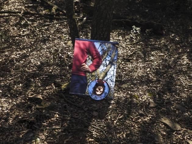 La força, últim àlbum de El Petit de Cal Eril