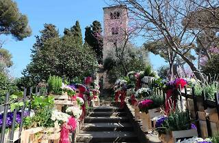 De flor en flor: Barcelona Flower and Garden Festival