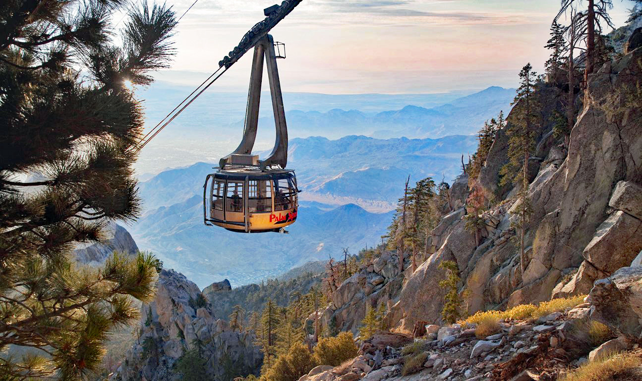 The 11 best things to do in Palm Springs