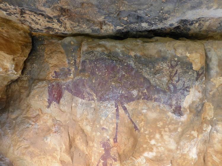 Matí dia 2: les pintures rupestres de Capçanes
