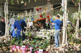 Photos from the Chicago Flower & Garden Show at Navy Pier